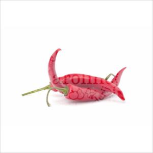 Pepers rood l Johan en Caroline