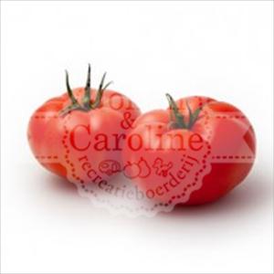 Vleestomaten l Johan en Caroline