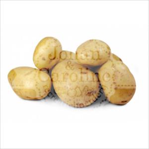 Frieslanders aardappelen l Johan en Caroline